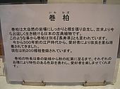 20111023iwahiba