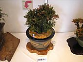20111023kirinjishi
