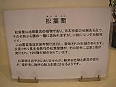 20111023matsubaran