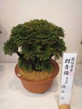 20141026gunjounishiki2