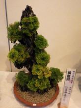 Kihoukan